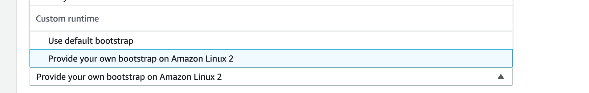 Select Custom Runtime